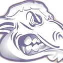 Fort Collins High School - Boys Varsity Football