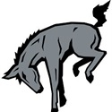 Muhlenberg College - Mens Varsity Lacrosse
