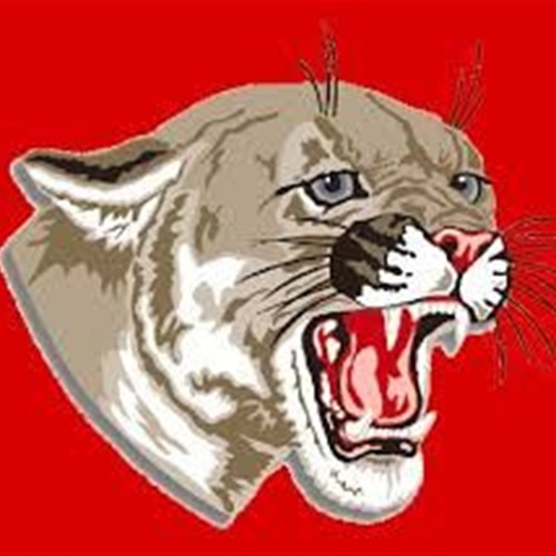 Van Wert High School - Girls Varsity Basketball