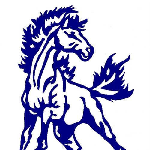 Mercer Area High School  - Boys' Varsity Basketball