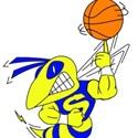 Saline High School - Saline Boys Basketball