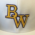 Bellevue West High School - Girls' Varsity Softball