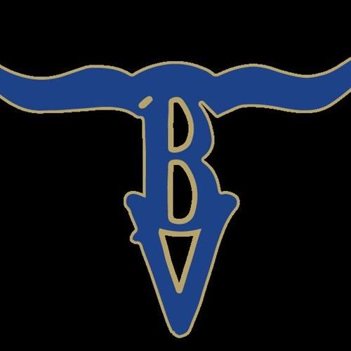 Buena Vista High School - Boys' Varsity Basketball