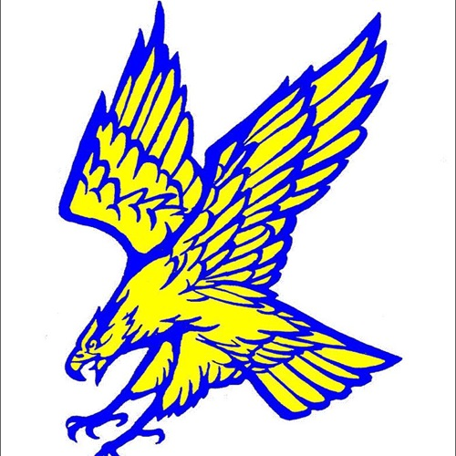 Fergus High School - Boys' Varsity Basketball