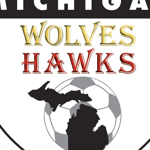 Michigan Wolves - 00 Black