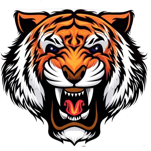 Samson High School - Boys' Varsity Basketball