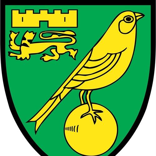 Norwich City FC - Academy Games