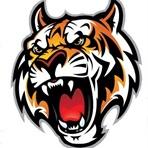 South Hardin High School - SH Boys Basketball