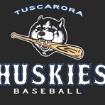 Tuscarora High School - Mens Varsity Baseball