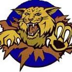 Mattawan High School - Mattawan Girls' JV Basketball Team