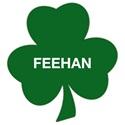 Bishop Feehan High School - Boys' Varsity Lacrosse