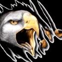 Clayton Valley High School - Boys' JV Lacrosse