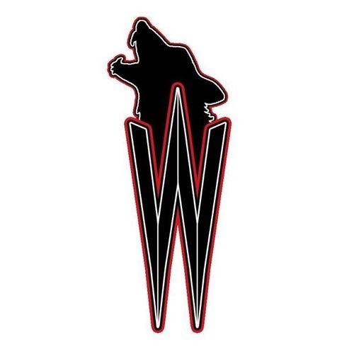 Joensuu Wolves - She-Wolves