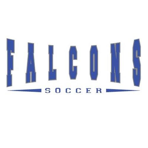 York High School - Boys' Varsity Soccer