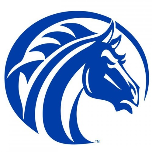 Fayetteville State University - Mens Varsity Football