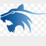 Har-Ber High School - Boys Varsity Basketball