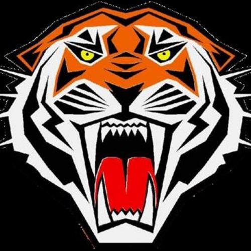 Ridgefield High School - Freshman Football
