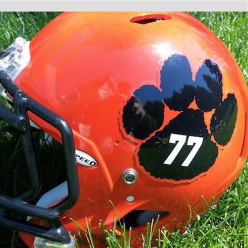 Wheaton-Warrenville South High School - Tigers - Varsity Football