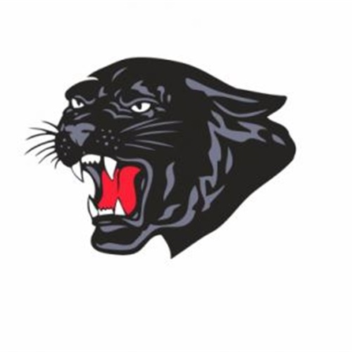 Parkers Prairie High School - Boys Varsity Football