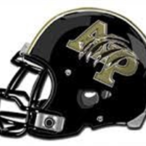AYSO Youth Football - Anahuac Panthers (Soph)