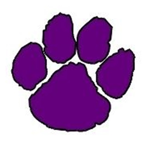 Hampshire High School - Girls' JV Cheer & Spirit