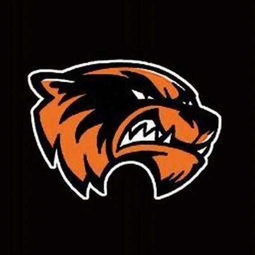 Waynesville Youth Football  - Waynesville Wolverines
