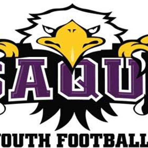Issaquah Youth Football- GEJFA - Issaquah Eagles Cub Purple