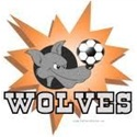 Johnson High School - Girls Varsity Soccer