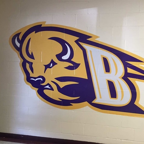Buffalo High School - Girls' Varsity Volleyball