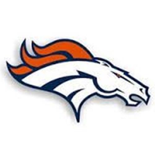 Davie Broncos - 11U