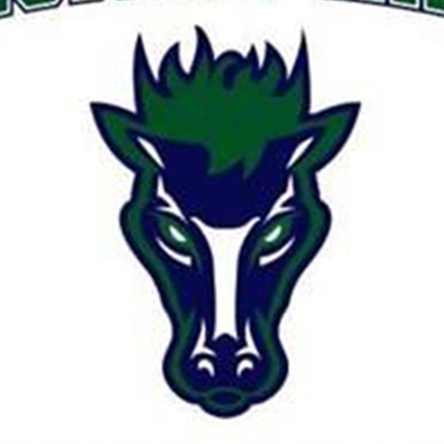 Damonte Ranch Mustangs- SYFL - DRM - JV
