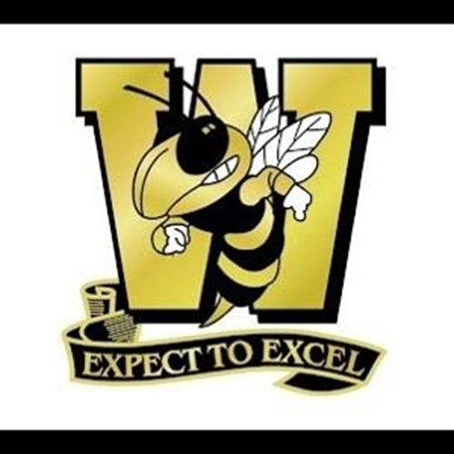 Wasatch Wasps - WOW