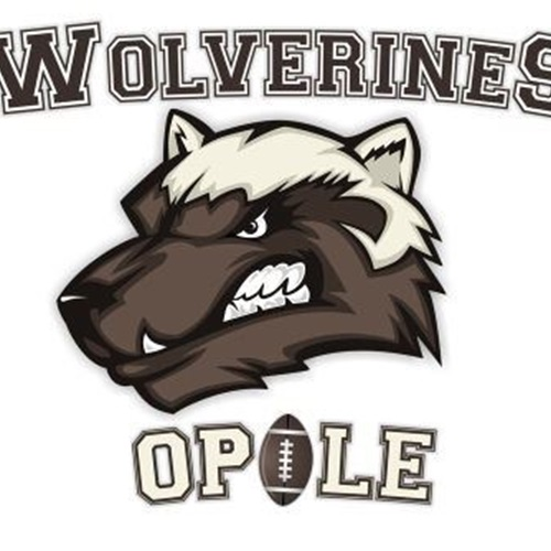 Wolverines Opole - Wolverines Opole