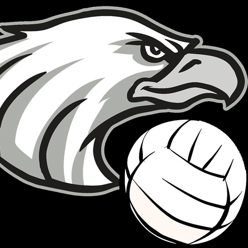 New Ulm High School - Girls' Varsity Volleyball