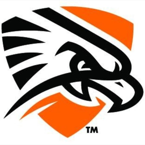 University of Texas of the Permian Basin - Men's Varsity Football