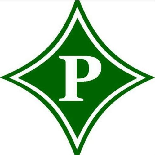 Pickens County- NGYFA - Dragons 10u