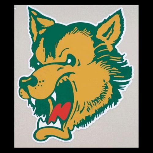 Carney-Nadeau High School - Boys' Varsity Football