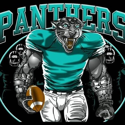 North Valley JV Football - Panthers