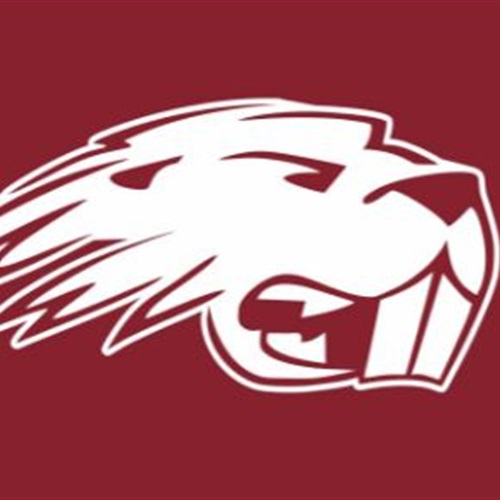 Lakeside High School - Lakeside Beavers