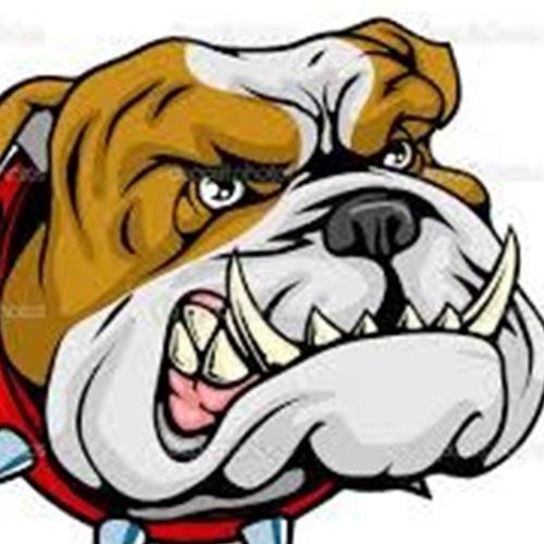 WKCYF Bulldogs- TCYFL - Varsity