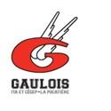 Cégep La Pocatière - Gaulois Football