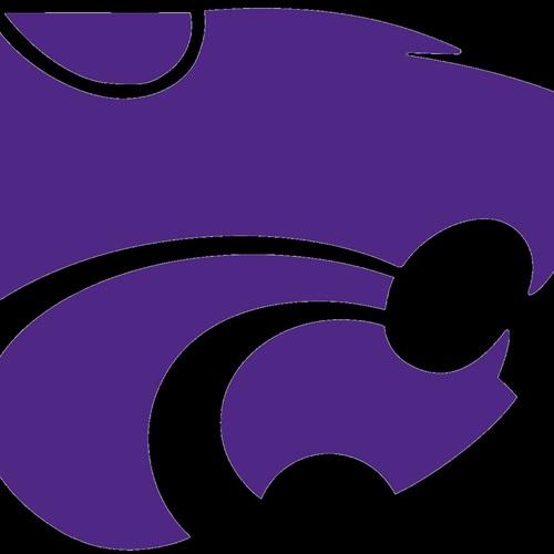 Humble Area Football League - Sophomore Humble Wildcats Purple