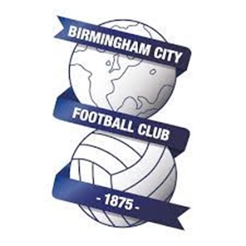 Birmingham City FC - U12