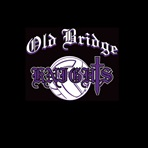Old Bridge High School - J.V. Volleyball