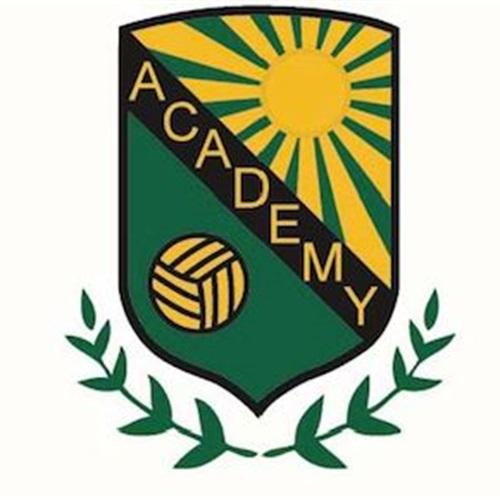 Academy Volleyball Club - 13 Gold
