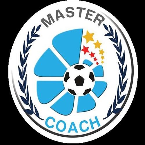 Master Coach - master coach