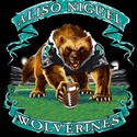 Aliso Niguel High School - Aliso Niguel Boys Varsity Football