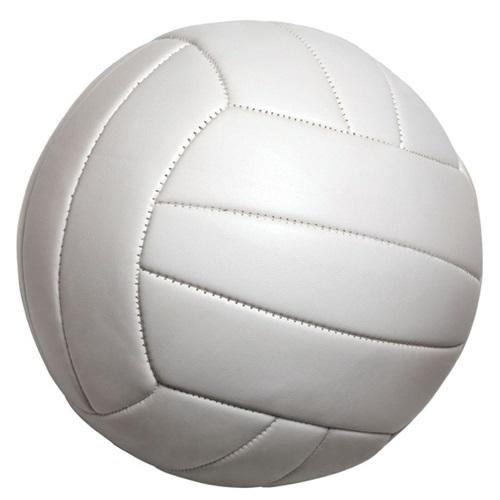 De Beque High School - Girls' Varsity Volleyball