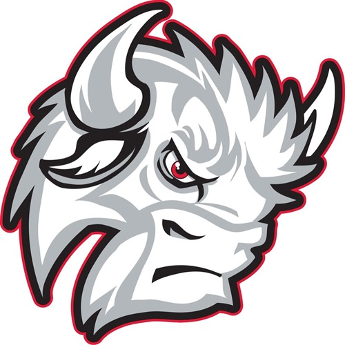 Buffalo High School - Varsity Boys Basketball