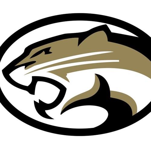Cougars YAFL Sophomores - Cougars